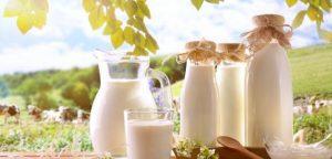 latte e bevande veg